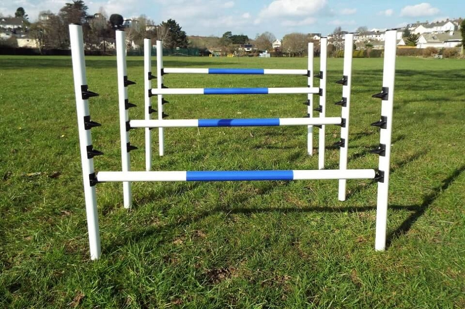 Dog Agility Training Equipment