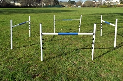 Maintenance Free Dog Jumps (4 jump set)