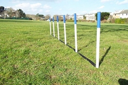 6 Agility Weave Poles with Spacers