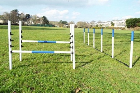 Maintenance Free Dog Jumps & Weaves (2 Jumps & 6/12 Pole Weaves)