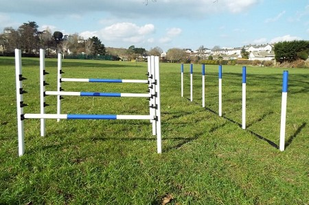 Maintenance Free Dog Jumps & Weaves (3 Jumps & 6/12 Pole Weaves)