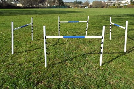 4 Dog Agility Jumps Set