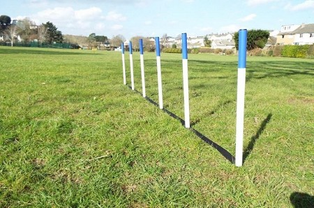 6 x Dog Agility Weave Poles with Spacers